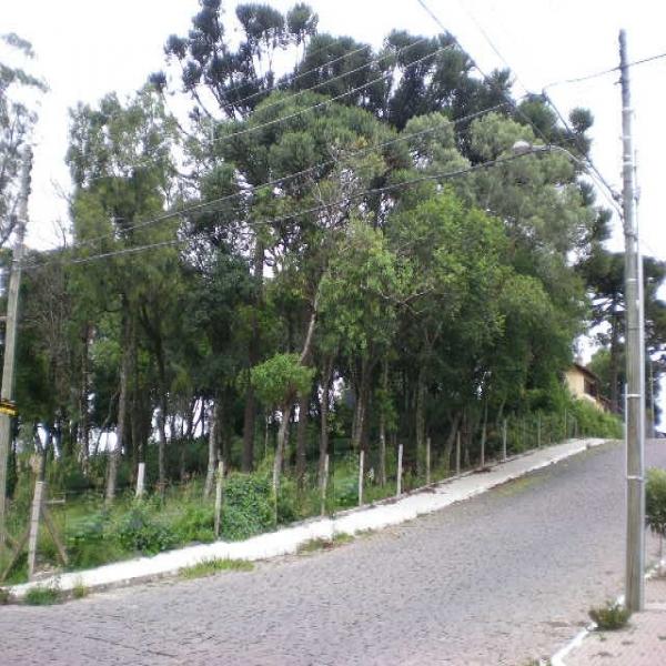 Terreno em Caxias do Sul no bairro PETRÓPOLIS